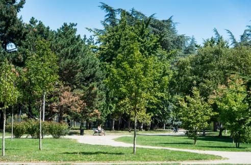 Le parc Bazin