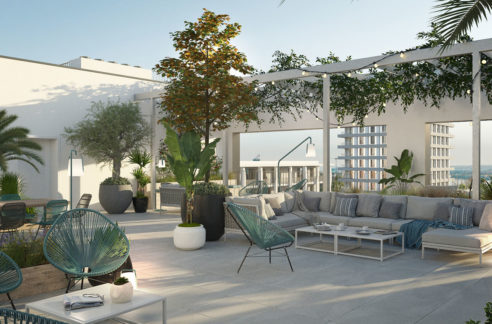 albizzia-confluence-native-rooftop